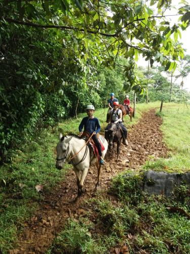 horseback-ride-rio-celeste-kids-trail