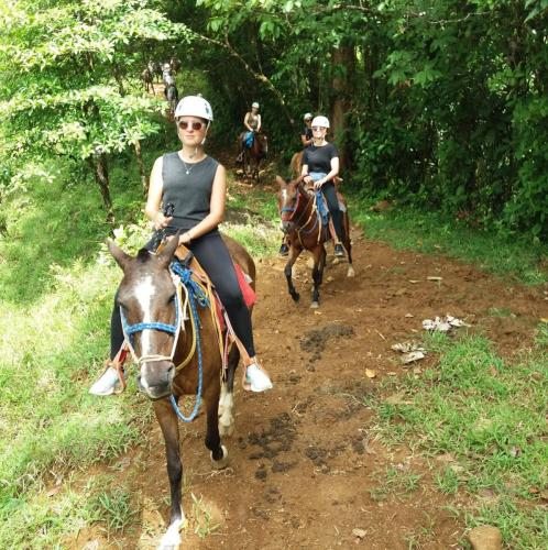 horseback-ride.private-trail